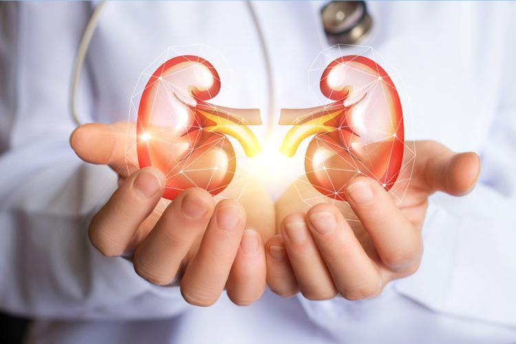Organ bağışıyla ilgili doğru sanılan 10 yanlış