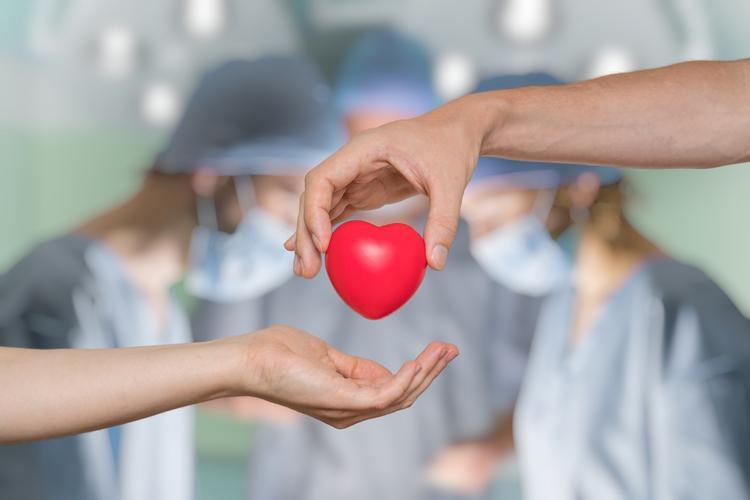 Organ bağışıyla sekiz kişinin hayatını kurtarmak mümkün